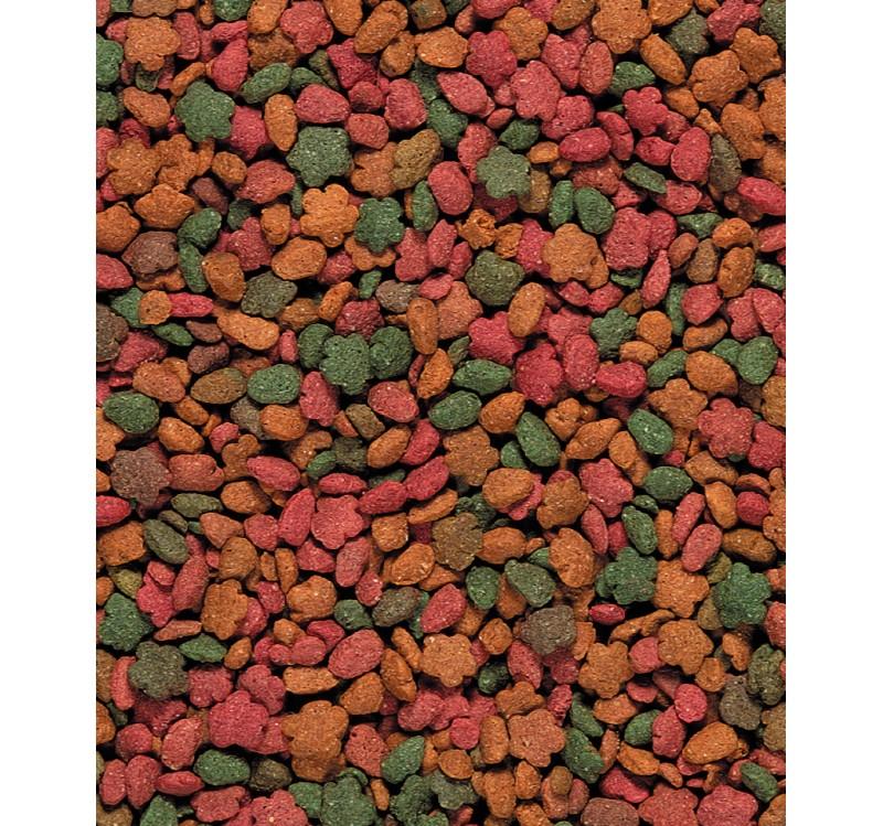 Гранулирана храна за средни папагали VERSELE LAGA NUTRIBIRD G14 TROPICAL, 1 kg