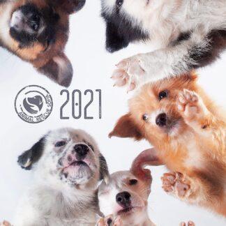 Благотворителен Календар ARS 2020 г.Благотворителен Календар ARS 2020 г. Best Seller Благотворителен Календар ARS 2020 г. Благотворителен Календар ARS 2020 г.Благотворителен Календар ARS 2020 г. Благотворителен Календар ARS 2020 г.Благотворителен Календар ARS 2020 г. Благотворителен Календар ARS 2020 г.Благотворителен Календар ARS 2020 г. Благотворителен Календар ARS 2020 г. Благотворителен Календар ARS 2020 г. Благотворителен Календар ARS 2020 г. Благотворителен Календар ARS 2020 г. Благотворителен Календар ARS 2020 г. Благотворителен календар ARS 2021 г.