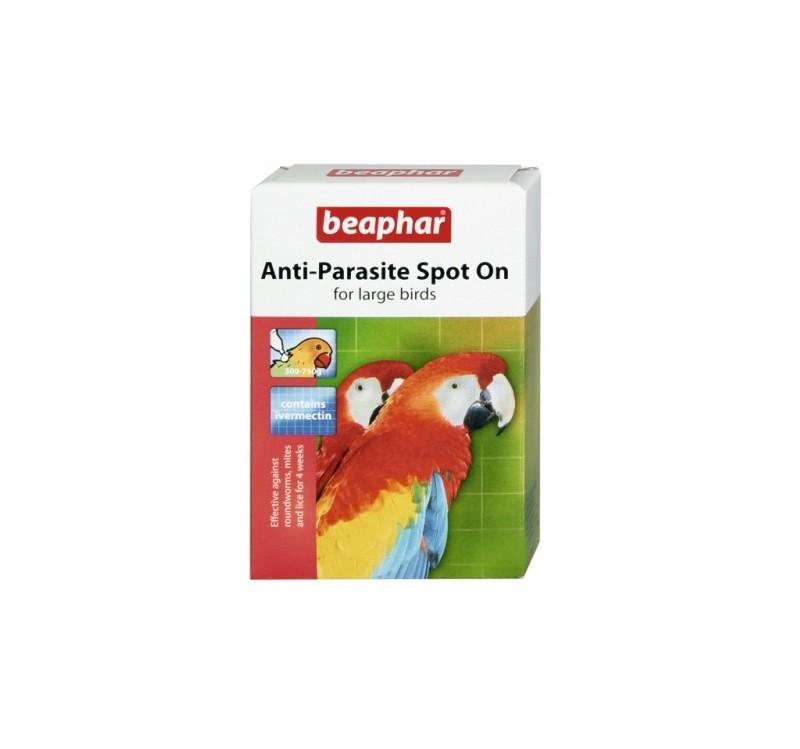 Противопаразитни пипети BEAPHAR ANTI-PARASITE SPOT ON LARGE за едри папагали, 2 бр