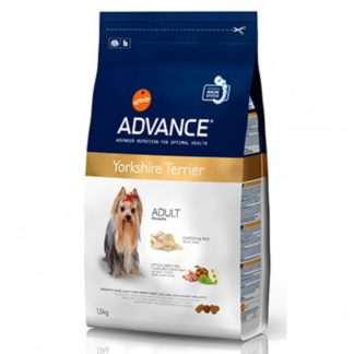 Advance Yorkshire Terrier 1.5кг