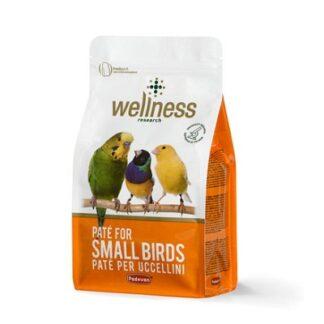 Мека яйчена храна за дребни птици PADOVAN WELLNESS PATE FOR SMALL BIRDS, 600 g
