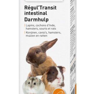 Хранителна добавка за декоратативни гризачи BEAPHAR DARMHULP, 100 ml
